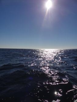 Fishing Field Trip 2012 017