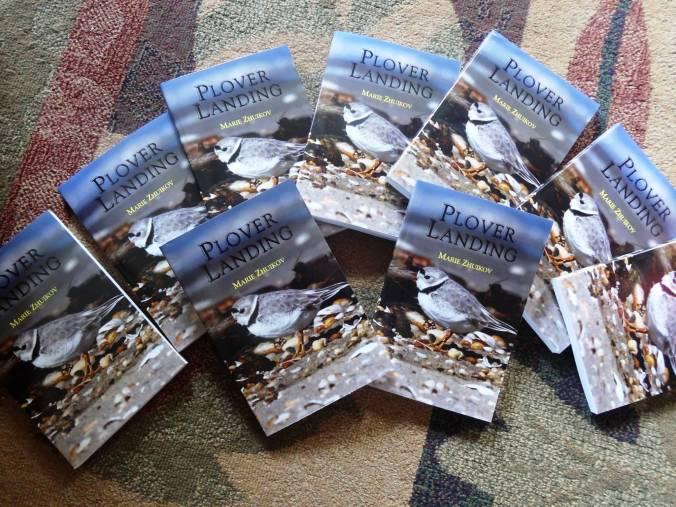 Plover Landing Novels
