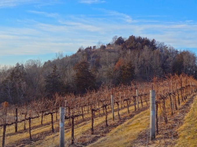 Wollersheim Winery 036